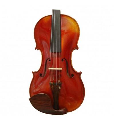 Violon (335)